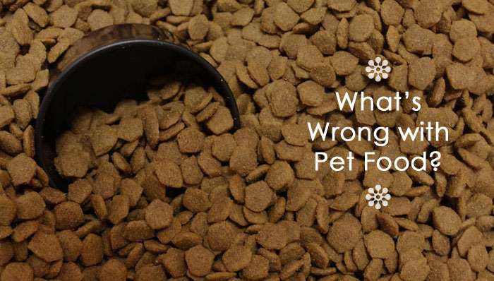 whats wrong with pet food